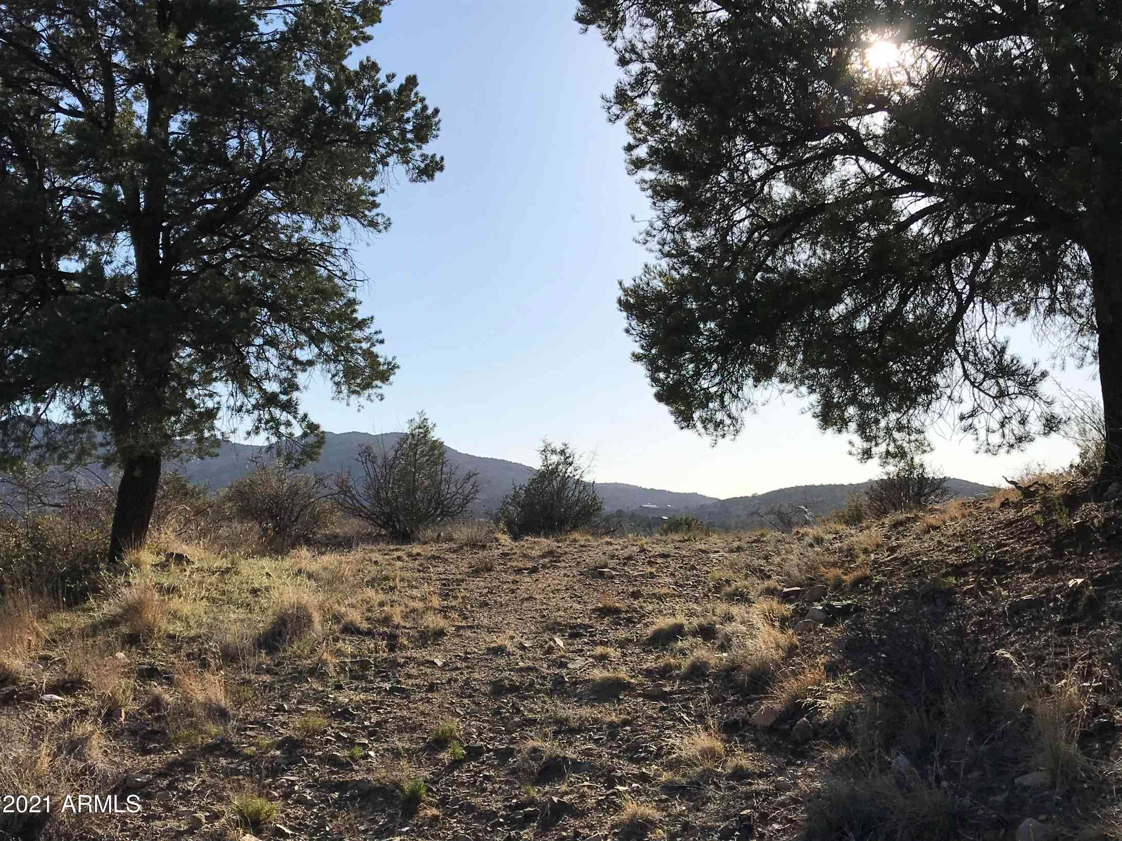 17888 S Tawny Lane #38, Peeples Valley, AZ, 86332,