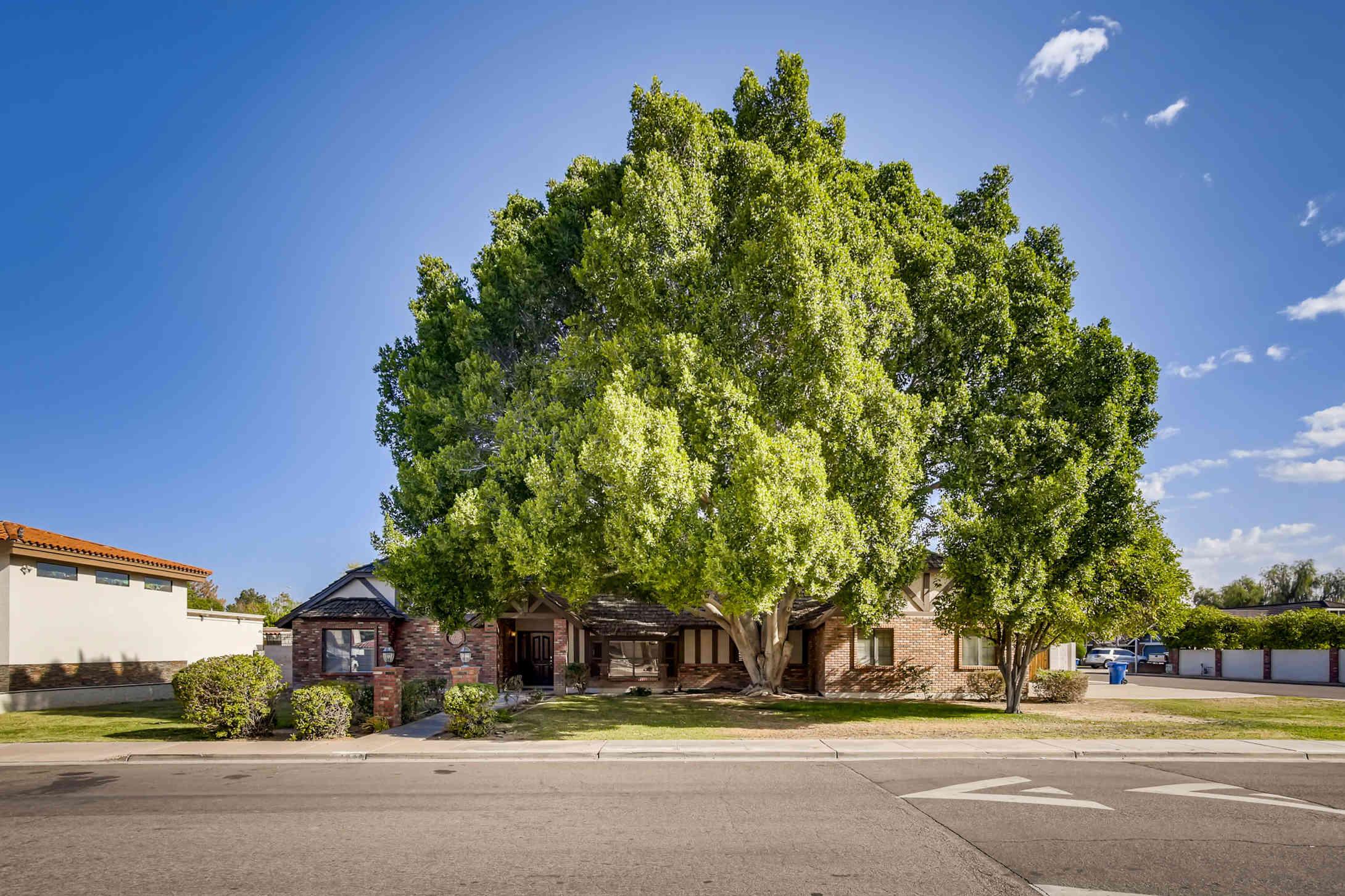1946 E LOCKWOOD Street, Mesa, AZ, 85203,