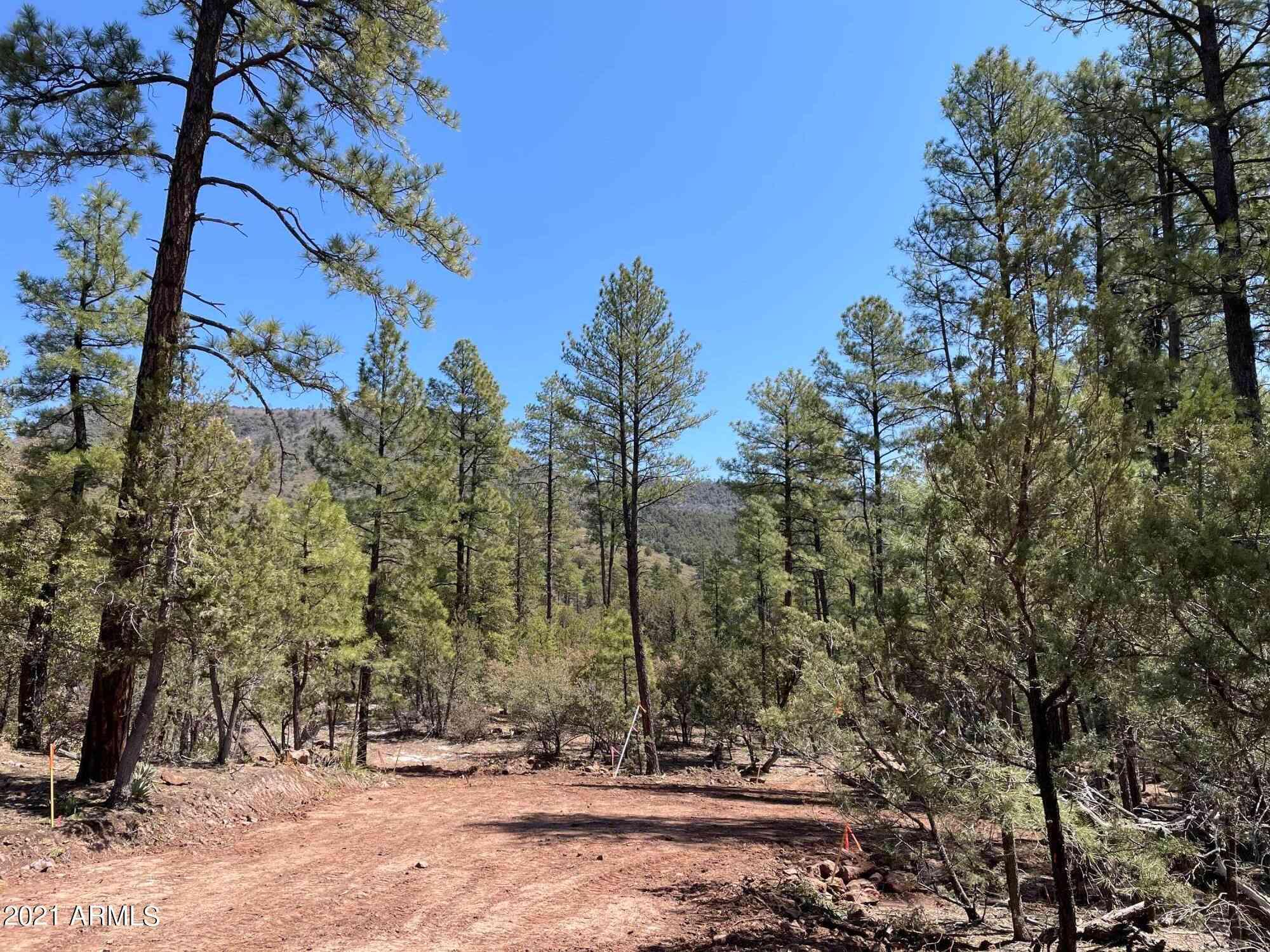 0000 Fawn Drive #1C, Pine, AZ, 85544,