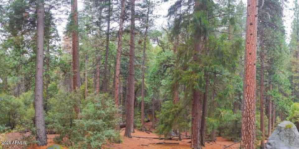 1400 W Manzanita Trail #3, Lakeside, AZ, 85929,
