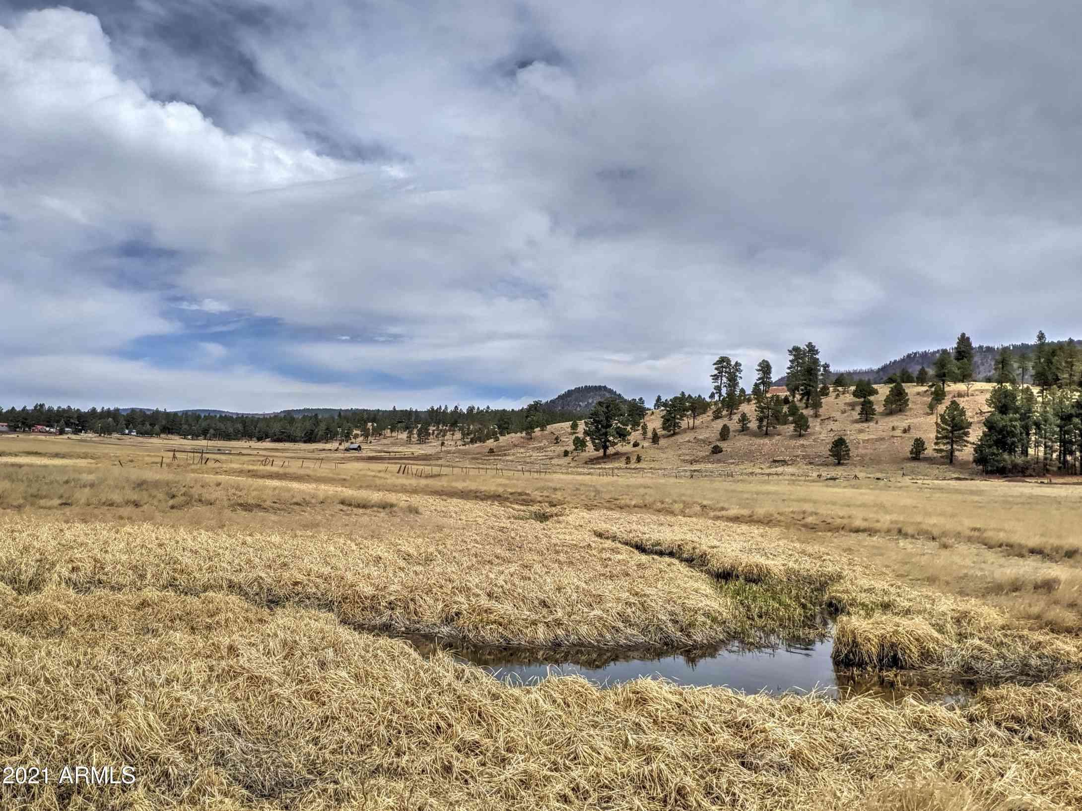 000 COUNTY ROAD 2105 -- #69, 70, Alpine, AZ, 85920,