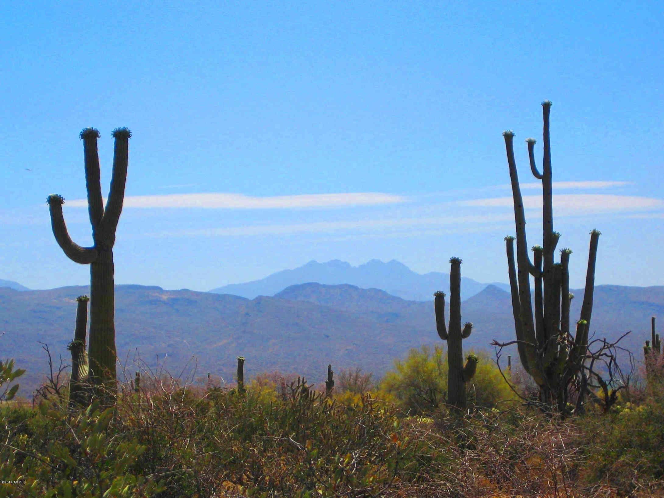 31300 N 173rd Place #-, Rio Verde, AZ, 85263,