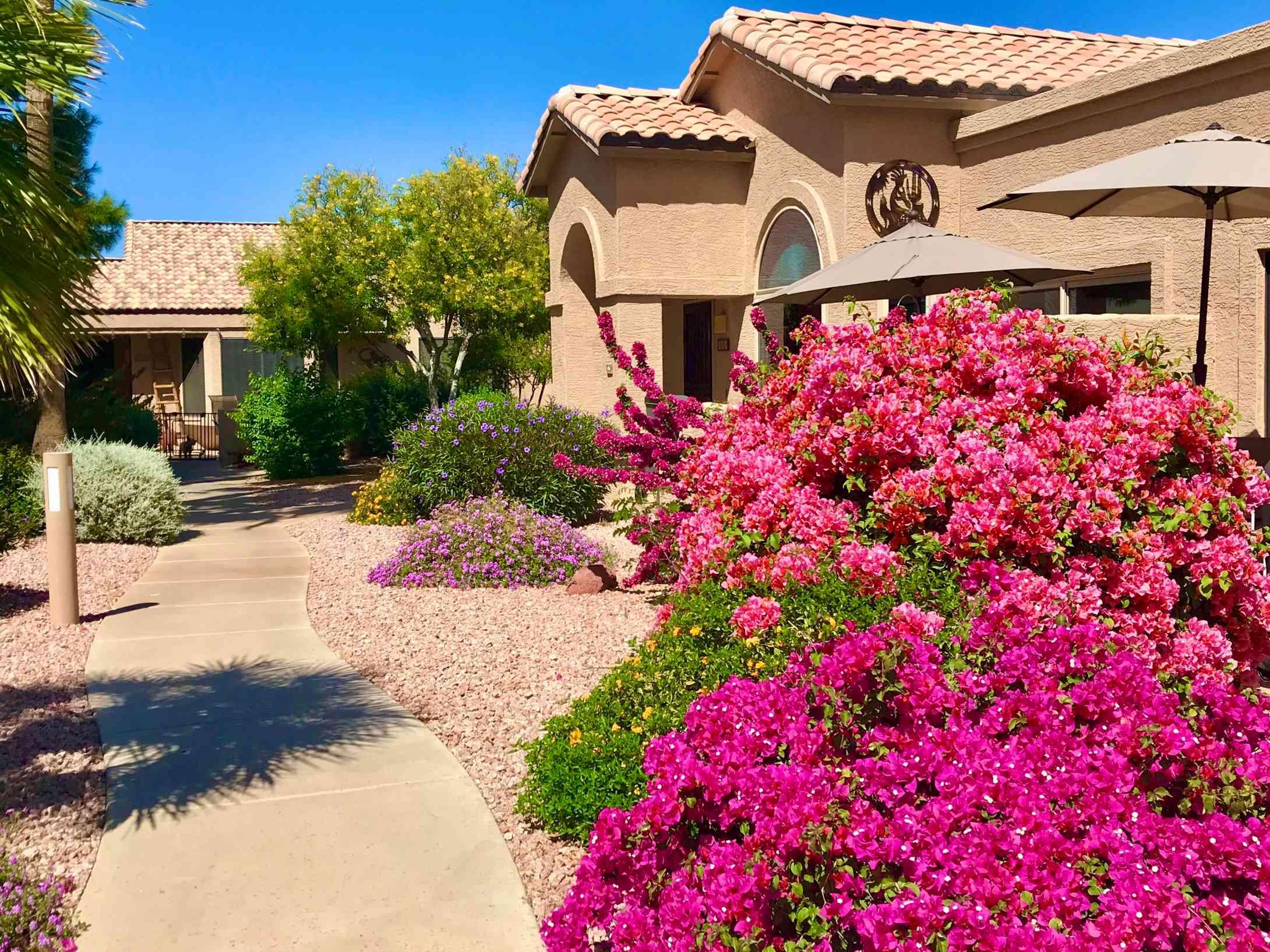 14300 W BELL Road #416, Surprise, AZ, 85374,