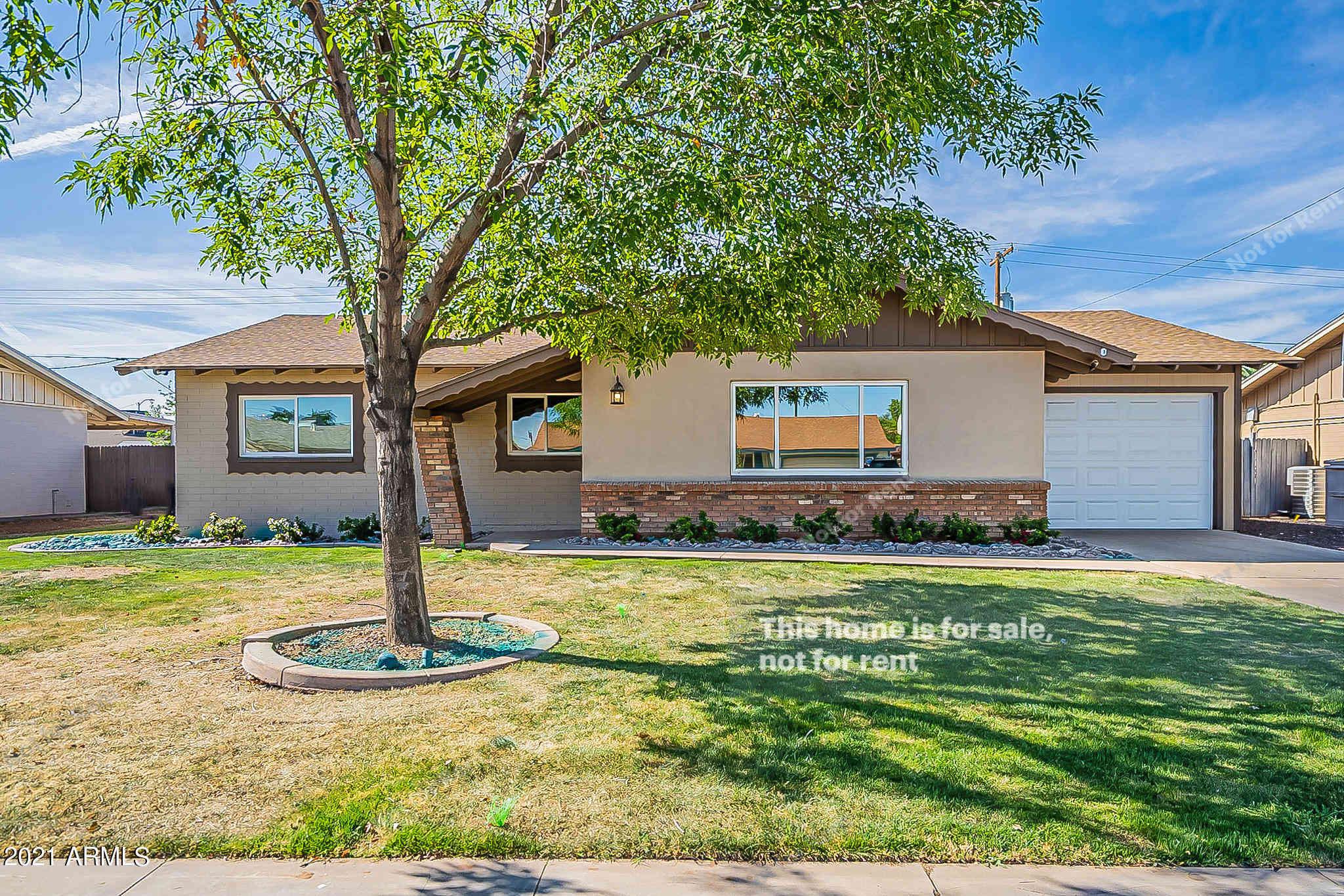 481 W IVANHOE Place, Chandler, AZ, 85225,