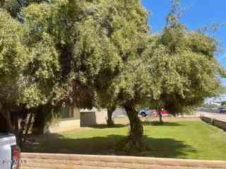 4422 W Geenway Road, Glendale, AZ, 85306,