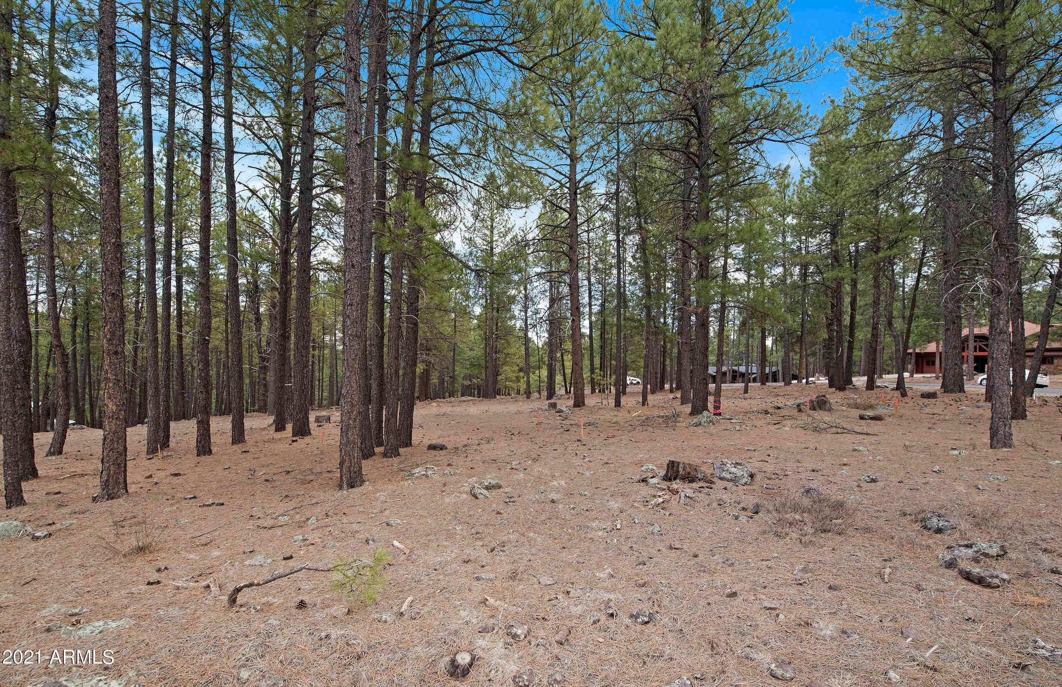 2061 Peery Francis -- #814, Flagstaff, AZ, 86005,
