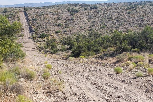 0000 S Rolling Stone Road #-