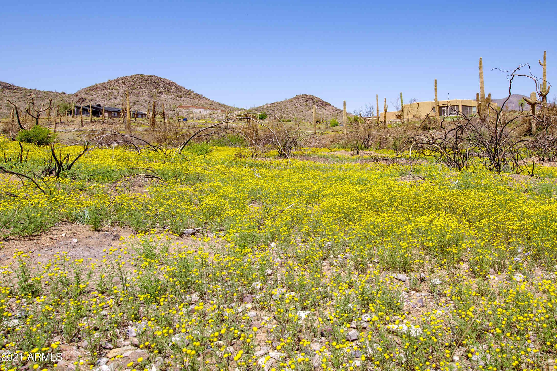 40180 N Old Stage Road #0, Cave Creek, AZ, 85331,