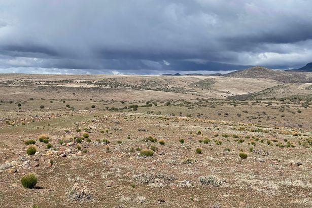 42 Acres Flecha Pass #221