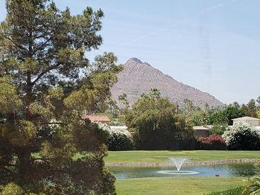 7860 E CAMELBACK Road #311, Scottsdale, AZ, 85251,
