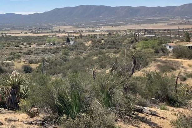 6 Rincon Ridge