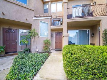 1079 S Positano Avenue, Anaheim Hills, CA, 92808,