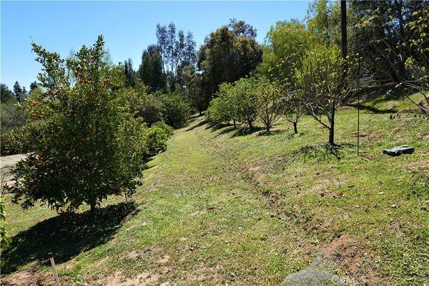 224 Tumble Creek Lane
