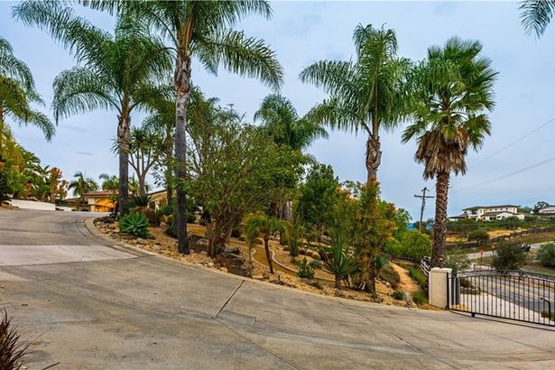 4250 Palomar Drive
