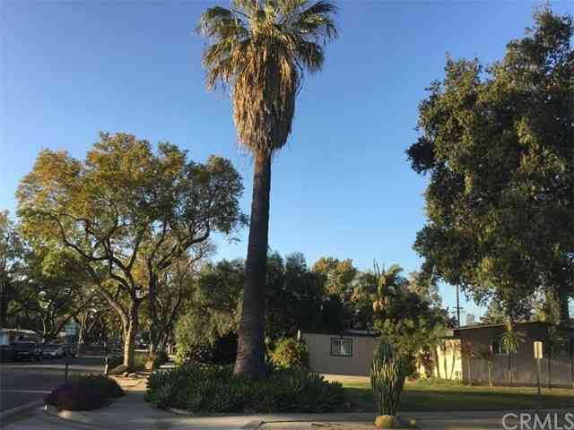 900 North Mountain View Place, Fullerton, CA, 92831,