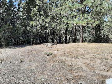 0 South Division, Big Bear Lake, CA, 92315,