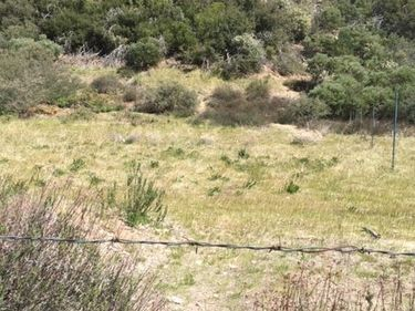 0 Lytle creek Road, Lytle Creek, CA, 92358,