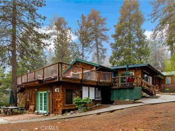 54525 Lilac Lane, Idyllwild, CA, 92549,