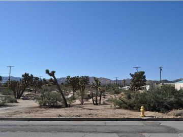 56290 Coyote Trail, Yucca Valley, CA, 92284,