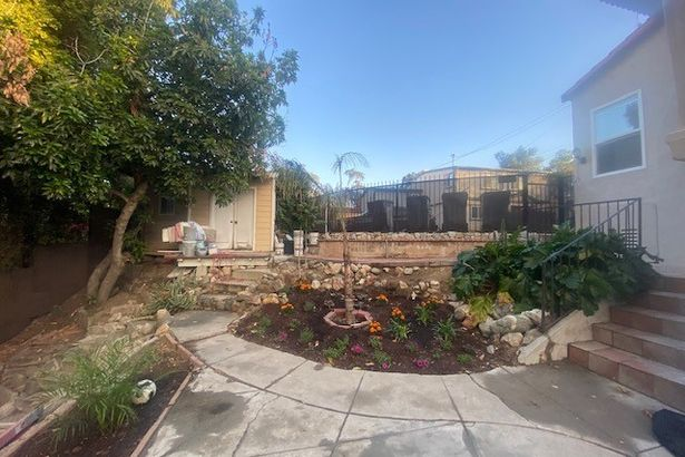 907 East Mountain View
