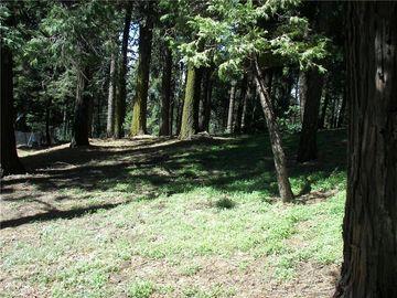 21546 Peak Circle, Cedarpines Park, CA, 92322,