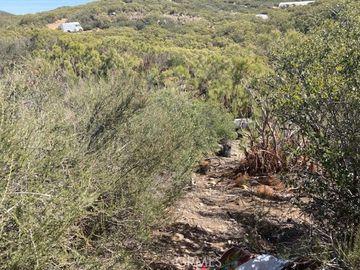 6 Rincon Ridge, Anza, CA, 92539,