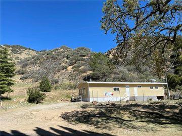 917 Canyon Drive, Lebec, CA, 93243,