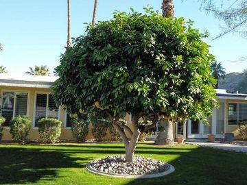 40990 Paxton #7, Rancho Mirage, CA, 92270,