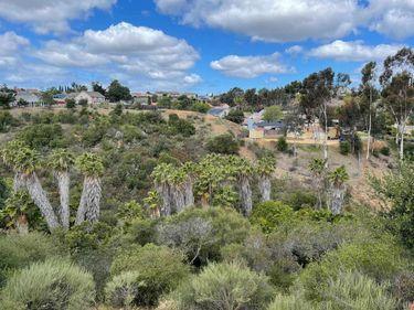 11464 ELBERT WAY, San Diego, CA, 92126,