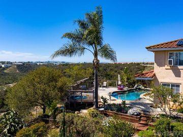 11085 Camino Propico, San Diego, CA, 92126,