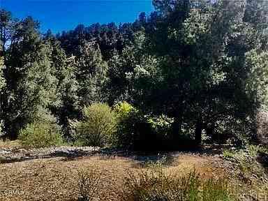 2100 Glacier Drive, Frazier Park, CA, 93225,