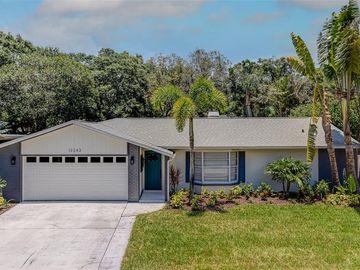 12243 97TH AVENUE, Seminole, FL, 33772,