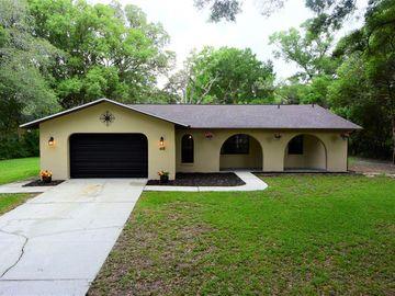 418 JENKINS AVENUE, Brooksville, FL, 34604,