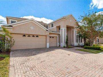 10506 CANARY ISLE DRIVE, Tampa, FL, 33647,