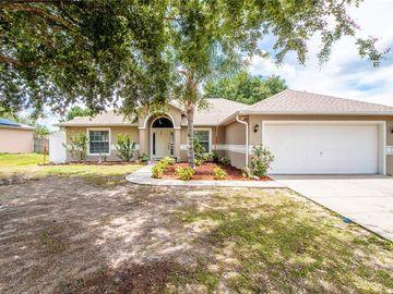 506 TIMBER VILLAGE ROAD, Groveland, FL, 34736,