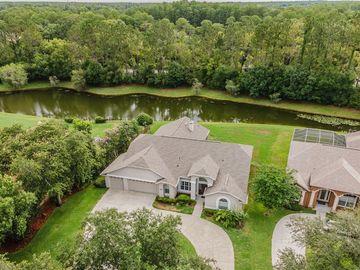 5616 GLENCREST BOULEVARD, Tampa, FL, 33625,