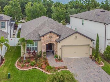 11635 SWEET TANGERINE LANE, Tampa, FL, 33626,