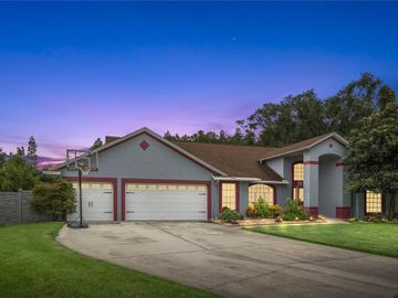 17405 MARY CHARLOTTE PLACE, Lutz, FL, 33549,