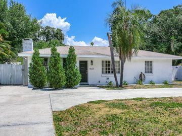 4623 W BAY VILLA AVENUE, Tampa, FL, 33611,