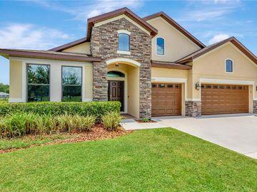 3423 KNOXVILLE PLACE, Plant City, FL, 33566,