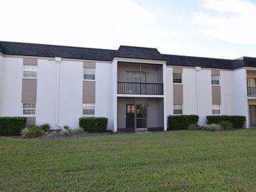 711 E RUSSELL LANE E #136, Brandon, FL, 33510,