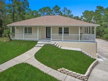 9005 LONG LAKE AVENUE, Weeki Wachee, FL, 34613,
