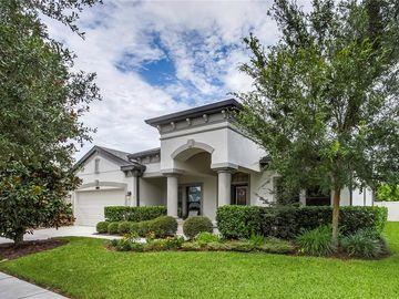 21827 BILLOWY JAUNT DRIVE, Land O Lakes, FL, 34637,