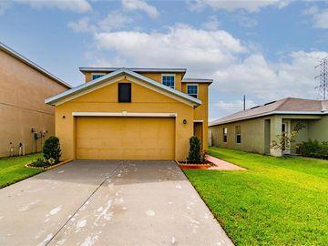 12116 BARNSLEY RESERVE PLACE, Gibsonton, FL, 33534,