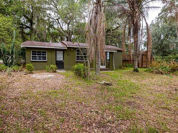 203 S SUNSET AVENUE, Mascotte, FL, 34753,