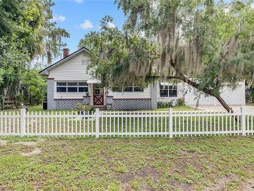 27440 LIME AVENUE, Yalaha, FL, 34797,