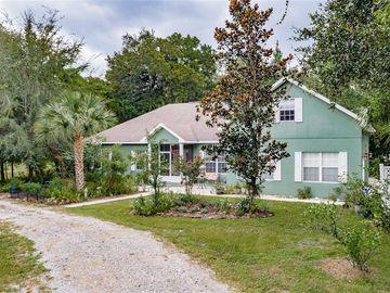12808 SWEET MAGNOLIAS LN, Dover, FL, 33527,