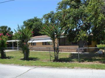 16746 SUGARBERRY LANE, Montverde, FL, 34756,
