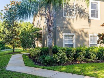 31222 FLANNERY COURT, Wesley Chapel, FL, 33543,
