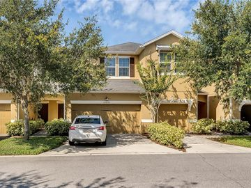 14238 DESERT HAVEN STREET #703, Windermere, FL, 34786,